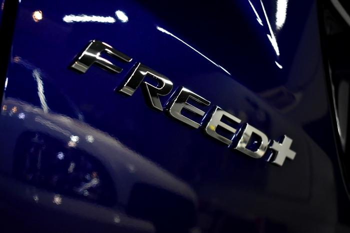 フリード-7